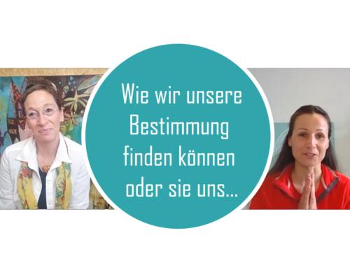 Wir wir unsere Bestimmung finden können: Interview mit Clara Morgenthau